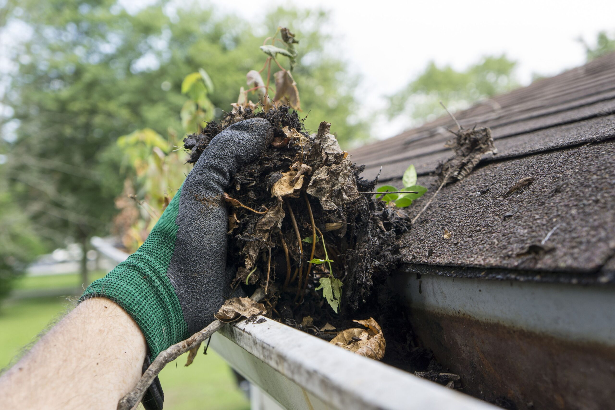Gutter Cleaning Tips That Can Save Your Life